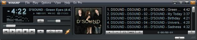 winamp_D'sound
